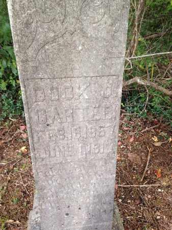 CARTER, DOCK - Lawrence County, Kentucky | DOCK CARTER - Kentucky Gravestone Photos