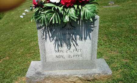 MURRAY, JAMES RUDOLPH - Lawrence County, Kentucky | JAMES RUDOLPH MURRAY - Kentucky Gravestone Photos