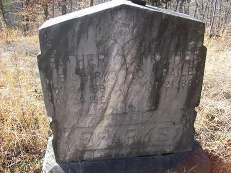 BAILEY SPARKS, C. A. - Lawrence County, Kentucky | C. A. BAILEY SPARKS - Kentucky Gravestone Photos