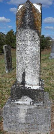 MCCALLISTER, JULIA ANN - Pulaski County, Kentucky   JULIA ANN MCCALLISTER - Kentucky Gravestone Photos