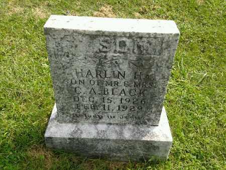 BLACK, HARLIN H - Rowan County, Kentucky   HARLIN H BLACK - Kentucky Gravestone Photos