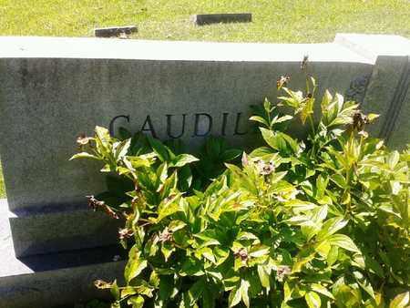 CAUDILL, FAMILY PLOT - Rowan County, Kentucky   FAMILY PLOT CAUDILL - Kentucky Gravestone Photos