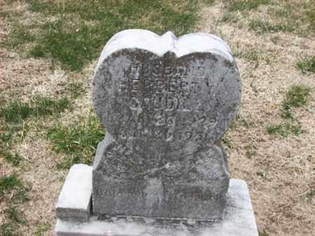CAUDILL, HERPERT W - Rowan County, Kentucky | HERPERT W CAUDILL - Kentucky Gravestone Photos