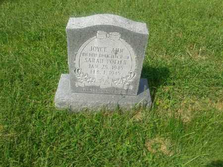 POTTER, JOYCE ANN - Rowan County, Kentucky | JOYCE ANN POTTER - Kentucky Gravestone Photos