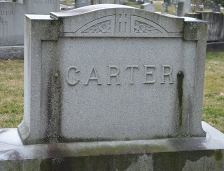 CARTER, *FAMILY MONUMENT - Shelby County, Kentucky | *FAMILY MONUMENT CARTER - Kentucky Gravestone Photos