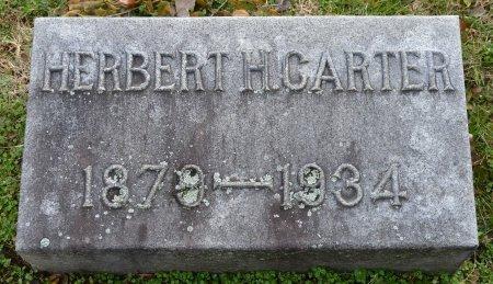 CARTER, HERBERT H. - Shelby County, Kentucky | HERBERT H. CARTER - Kentucky Gravestone Photos