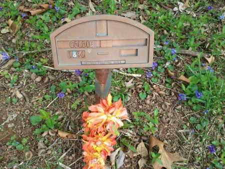 ?, GOLDIE - Simpson County, Kentucky   GOLDIE ? - Kentucky Gravestone Photos