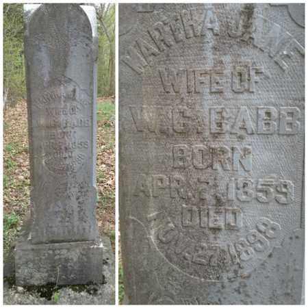 BABB, MARTHA JANE - Simpson County, Kentucky | MARTHA JANE BABB - Kentucky Gravestone Photos