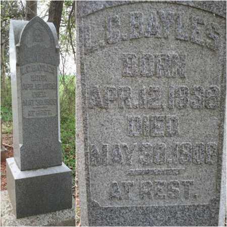 BAYLES, LEVI CAROLL - Simpson County, Kentucky   LEVI CAROLL BAYLES - Kentucky Gravestone Photos