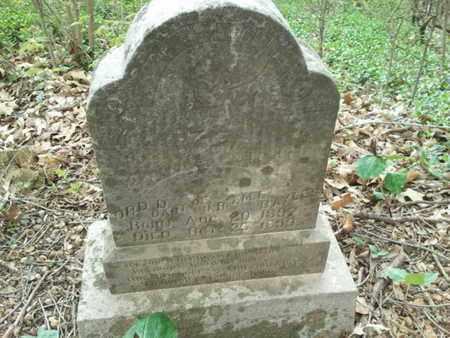BAYLES, ORD D. - Simpson County, Kentucky | ORD D. BAYLES - Kentucky Gravestone Photos