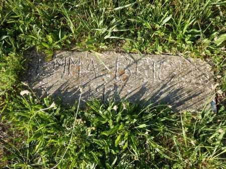 BRIGGS, EMMA F. - Simpson County, Kentucky   EMMA F. BRIGGS - Kentucky Gravestone Photos