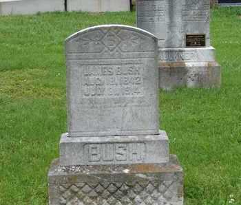 BUSH, JAMES - Simpson County, Kentucky | JAMES BUSH - Kentucky Gravestone Photos