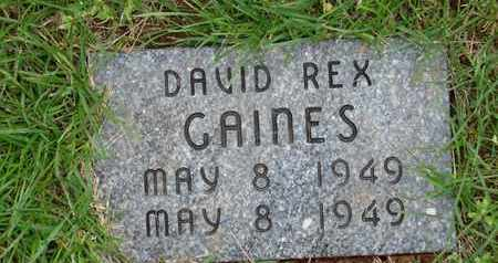 GAINES, DAVID REX - Simpson County, Kentucky | DAVID REX GAINES - Kentucky Gravestone Photos