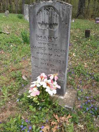 GOIN, MARY - Simpson County, Kentucky | MARY GOIN - Kentucky Gravestone Photos