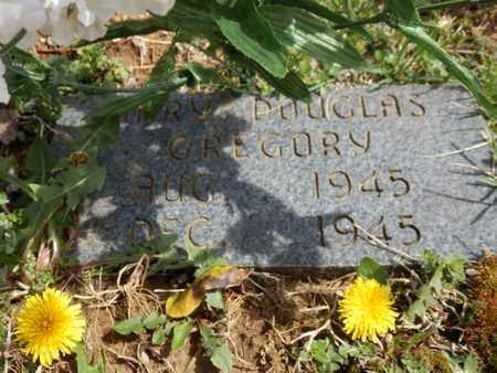 GREGORY, MARY DOUGLAS - Simpson County, Kentucky   MARY DOUGLAS GREGORY - Kentucky Gravestone Photos