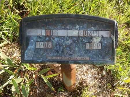 GUMM, ALVIS - Simpson County, Kentucky   ALVIS GUMM - Kentucky Gravestone Photos