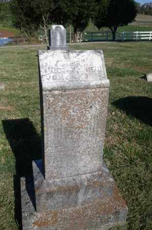 HENDRICKS, NELLIE N. - Simpson County, Kentucky | NELLIE N. HENDRICKS - Kentucky Gravestone Photos