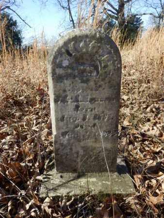 HENSON, RILEY MC. - Simpson County, Kentucky   RILEY MC. HENSON - Kentucky Gravestone Photos