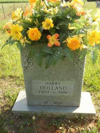 HOLLAND, HARRY - Simpson County, Kentucky | HARRY HOLLAND - Kentucky Gravestone Photos