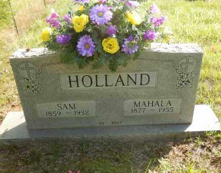 HOLLAND, MAHALA - Simpson County, Kentucky | MAHALA HOLLAND - Kentucky Gravestone Photos