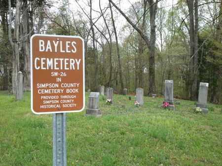 *OVERIEW,  - Simpson County, Kentucky |  *OVERIEW - Kentucky Gravestone Photos