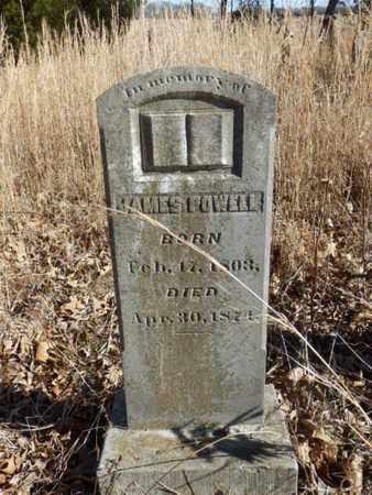 POWELL, JAMES - Simpson County, Kentucky | JAMES POWELL - Kentucky Gravestone Photos