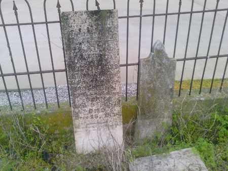 SLOSS, FANNIE A. - Simpson County, Kentucky | FANNIE A. SLOSS - Kentucky Gravestone Photos