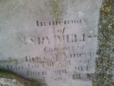SLOSS VINEYARD, MARY MELISSA - Simpson County, Kentucky | MARY MELISSA SLOSS VINEYARD - Kentucky Gravestone Photos
