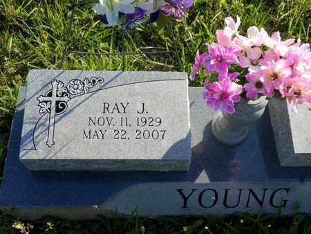 YOUNG, RAY JUNIOR - Simpson County, Kentucky   RAY JUNIOR YOUNG - Kentucky Gravestone Photos