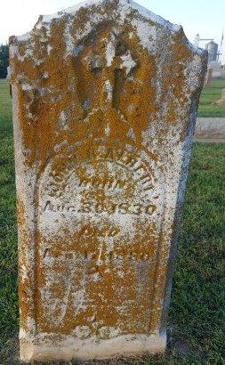 ALBERT, JOHN R - Union County, Kentucky | JOHN R ALBERT - Kentucky Gravestone Photos