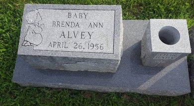 ALVEY, BRENDA ANN - Union County, Kentucky | BRENDA ANN ALVEY - Kentucky Gravestone Photos