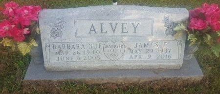 ALVEY, JAMES S - Union County, Kentucky | JAMES S ALVEY - Kentucky Gravestone Photos