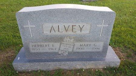 ALVEY, HERBERT E - Union County, Kentucky | HERBERT E ALVEY - Kentucky Gravestone Photos