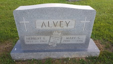 ALVEY, MARY G. - Union County, Kentucky | MARY G. ALVEY - Kentucky Gravestone Photos