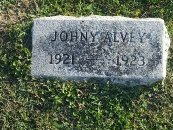 ALVEY, JOHNY - Union County, Kentucky | JOHNY ALVEY - Kentucky Gravestone Photos