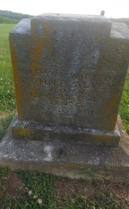 ALVEY, MARY M - Union County, Kentucky | MARY M ALVEY - Kentucky Gravestone Photos