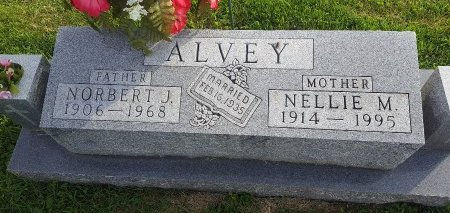 ALVEY, NELLIE M - Union County, Kentucky | NELLIE M ALVEY - Kentucky Gravestone Photos