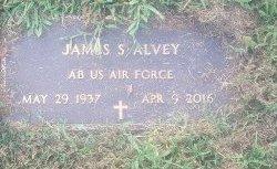 ALVEY (VETERAN), JAMES S - Union County, Kentucky | JAMES S ALVEY (VETERAN) - Kentucky Gravestone Photos