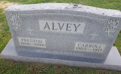 ALVEY, WILLIAM PRESTON - Union County, Kentucky   WILLIAM PRESTON ALVEY - Kentucky Gravestone Photos