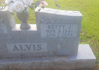ALVIS, BETTY J - Union County, Kentucky | BETTY J ALVIS - Kentucky Gravestone Photos