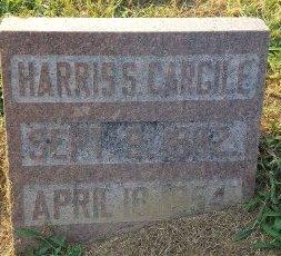 CARGILE, HARRIS S - Union County, Kentucky | HARRIS S CARGILE - Kentucky Gravestone Photos
