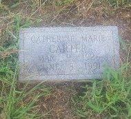 CARTER, CATHERINE MARIE - Union County, Kentucky   CATHERINE MARIE CARTER - Kentucky Gravestone Photos