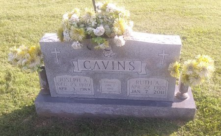 CAVINS, JOSEPH A - Union County, Kentucky   JOSEPH A CAVINS - Kentucky Gravestone Photos
