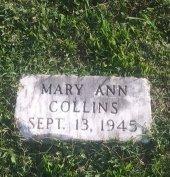 COLLINS, MARY ANN - Union County, Kentucky | MARY ANN COLLINS - Kentucky Gravestone Photos