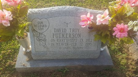 FULKERSON, DAVID TROY - Union County, Kentucky | DAVID TROY FULKERSON - Kentucky Gravestone Photos