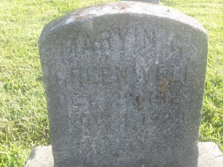 GREENWELL, MARYIN - Union County, Kentucky | MARYIN GREENWELL - Kentucky Gravestone Photos