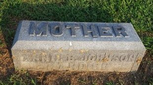 JOHNSON HARDIGG, ANNIE B - Union County, Kentucky | ANNIE B JOHNSON HARDIGG - Kentucky Gravestone Photos