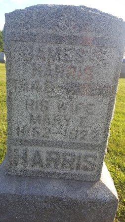 HARRIS, JAMES T - Union County, Kentucky | JAMES T HARRIS - Kentucky Gravestone Photos