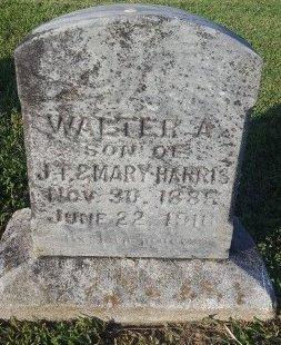 HARRIS, WALTER A - Union County, Kentucky | WALTER A HARRIS - Kentucky Gravestone Photos