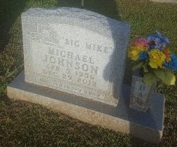 JOHNSON, MICHAEL - Union County, Kentucky | MICHAEL JOHNSON - Kentucky Gravestone Photos